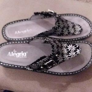 Alegria Thong Slippers Sz 10